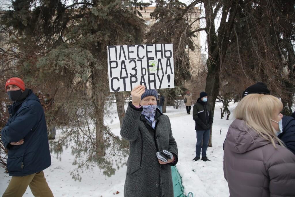 """""""Плесень разъела страну!"""" Участники акции в сквере Симбирцева подняли плакаты"""
