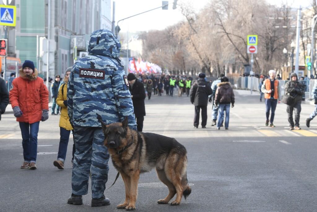 В Волгограде служебная собака помогла школьнику вернуть 500 рублей