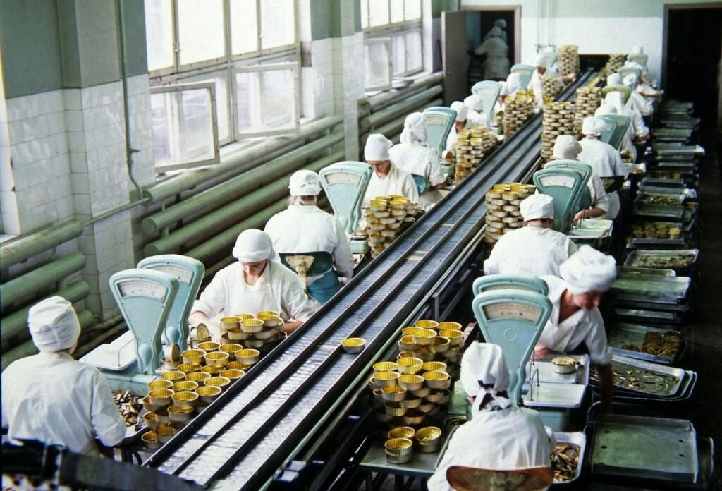 Под Волгоградом строят крупнейший в стране консервный завод