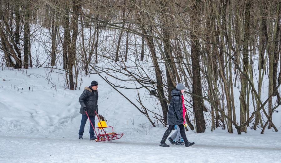 14 февраля в Волгограде похолодает до -10 градусов