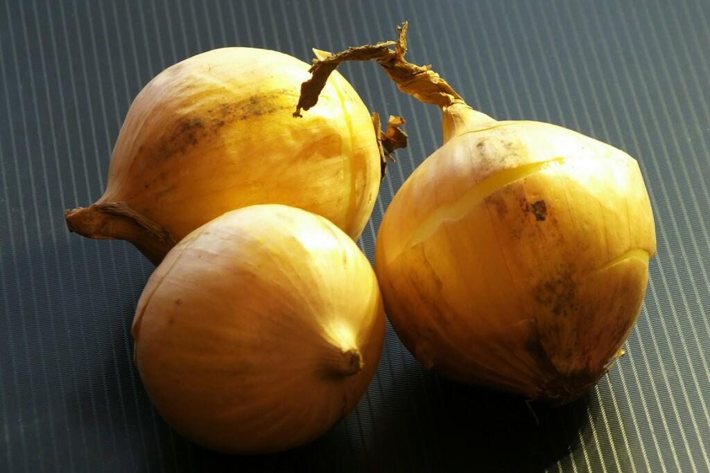 За фиктивное «выращивание» лука осудят жителя Волгограда