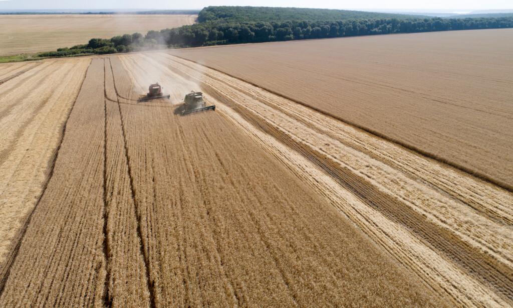 В Волгоградской области у аграриев отобрали 400 гектаров земли в пользу государства