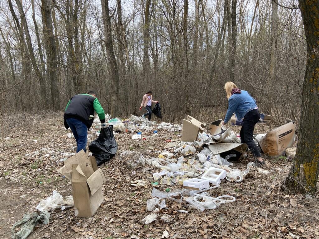 «50% мусора отправили на переработку»: жители расчищают от свалок природный парк в Волгоградской области