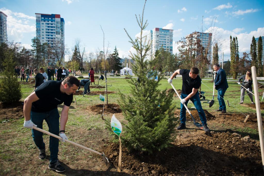 Сбербанк высадил деревья в парке ЦПКиО