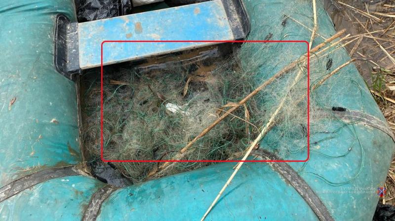 В Волгоградской области опять наказали браконьеров