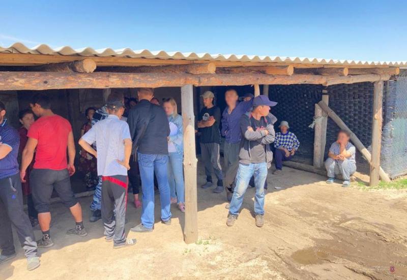 Незаконные мигранты и несанкционированный забор воды для полива выявлены полицией в тепличном хозяйстве Иловлинского района