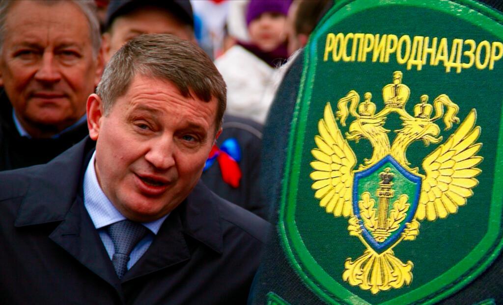 Росприроднадзор не поддержал проект постановления губернатора Бочарова о вырубке парка «Волго-Ахтубинская пойма»