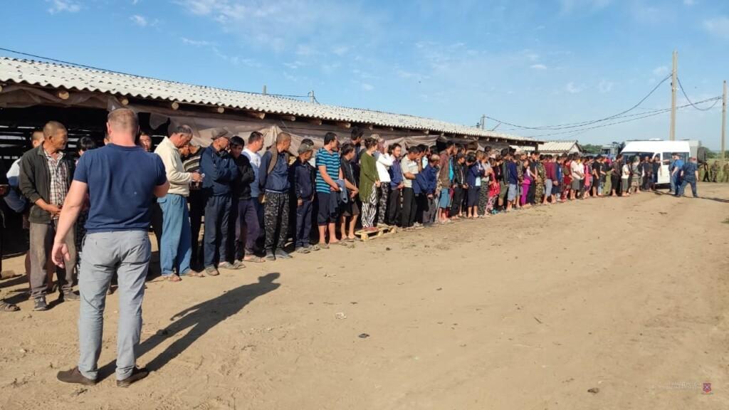 Треть трудовых мигрантов в Городищенском районе работали без разрешения