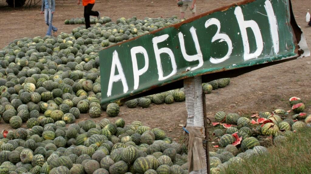 Жителям Волгоградской области будут выдавать арбузы за вакцинацию