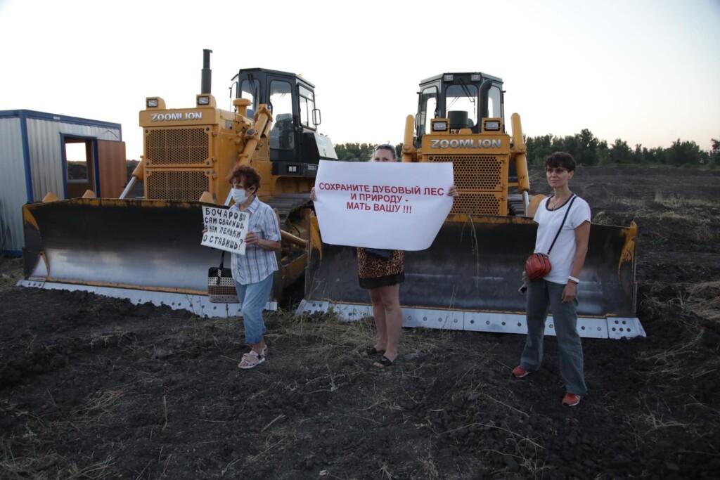 """""""Бочаров, сам свалишь, а нам пеньки оставишь?"""": жители Волгоградской области требуют остановить строительство моста в природном парке"""