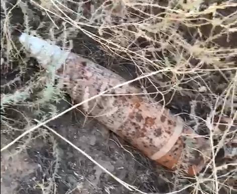 Склад боеприпасов времен ВОВ в трехстах метрах от теплиц много лет никто не разминирует