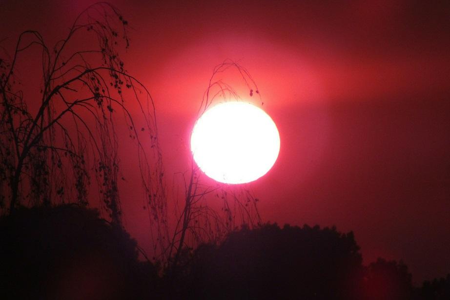 Гидрометцентр: аномальная жара в Волгоградской области продержится до конца недели