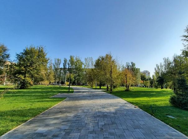 В Волгограде преображается сквер имени 8 Марта