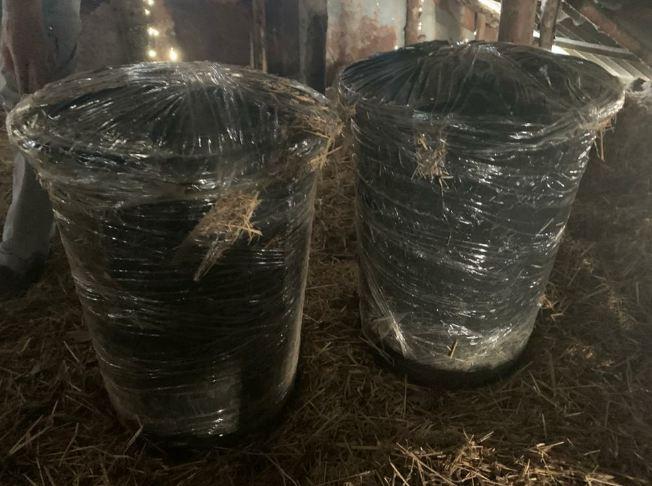 Сотрудники Волгоградского УФСБ изъяли две бочки с каннабисом