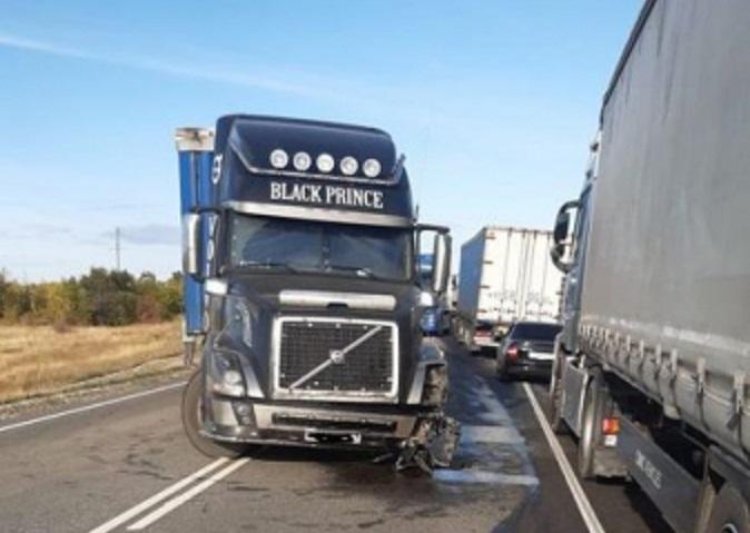 Под Волгоградом легковушка столкнулась с четырьмя грузовиками